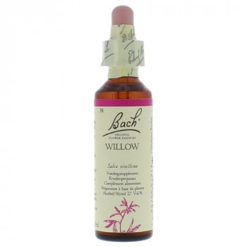 Bach bloesem No 38 Willow
